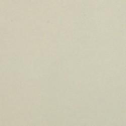 UNICOLOR WHITE 22191 SF