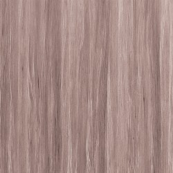 TAUPE TROPICAL 14811 WV